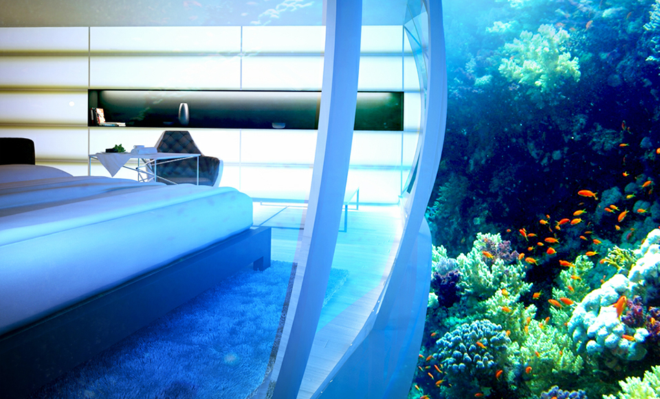 Tourists will be greeted by the underwater exquisiteness and recreation under the water.