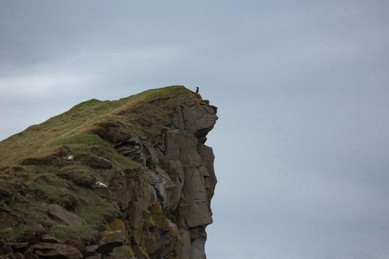 Bird Watching at Latrabjarg Cliffs, Iceland24_exposure_resize