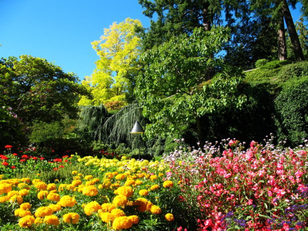 Butchart Garden Canada222_resize