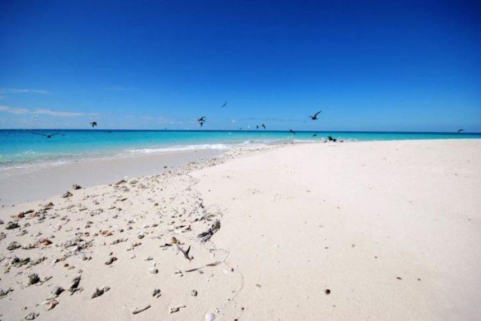 White Sandy Beaches Australia 03