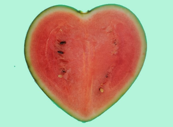 world's first heart-shaped watermelon