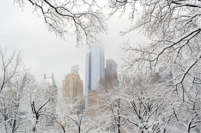 Wintery Wonderland of Central Park  4