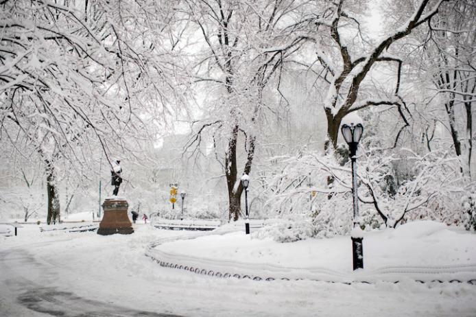 Wintery Wonderland of Central Park  5
