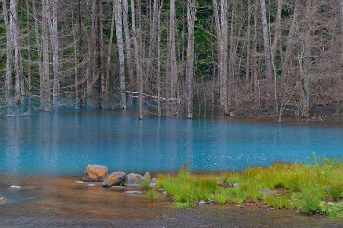 Blue Pond Haikkaido Japan10