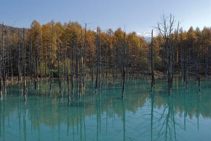 Blue Pond Haikkaido Japan13