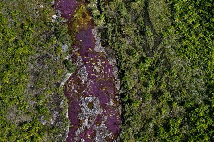 Cano Cristales a small river