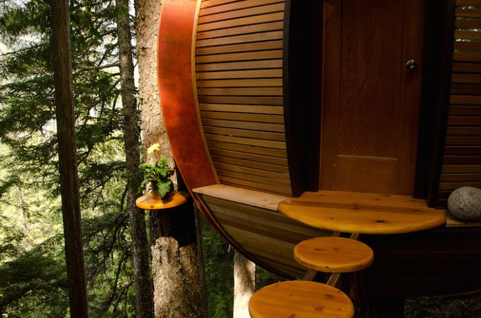Egg-Shaped Tree House is Secretly Nestled in Canada's Woods6