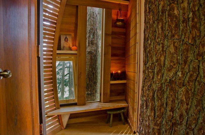 Egg-Shaped Tree House is Secretly Nestled in Canada's Woods8