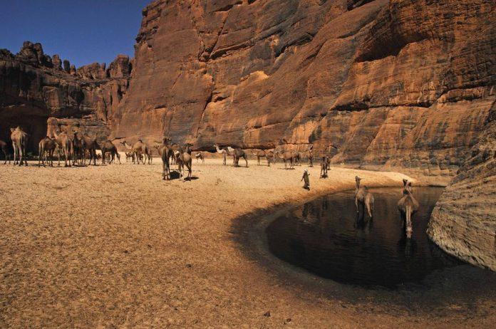 Guelta d'Archei11
