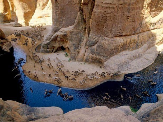 Guelta d'Archei12