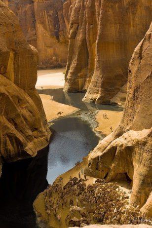 Guelta d'Archei16