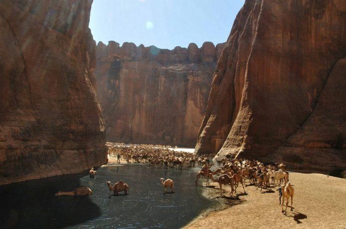 Guelta d'Archei5