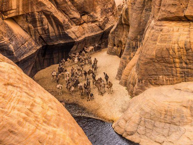 Guelta d'Archei6
