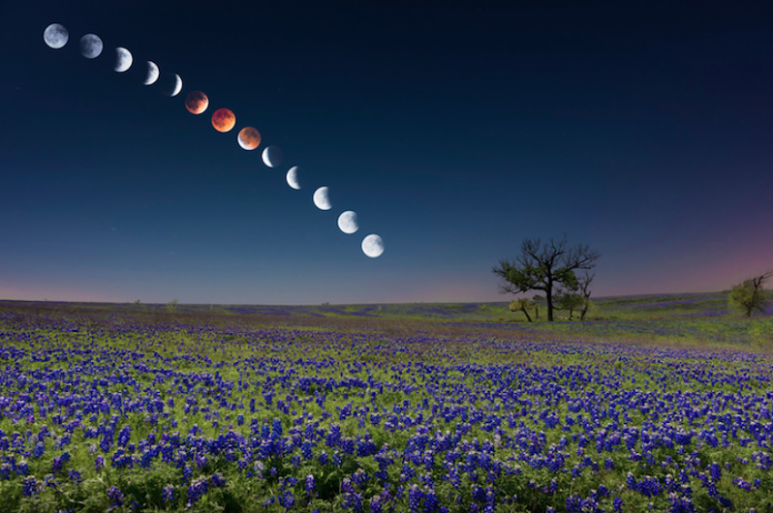 Magnificent Composite Image of the Blood Moon Lunar Eclipse