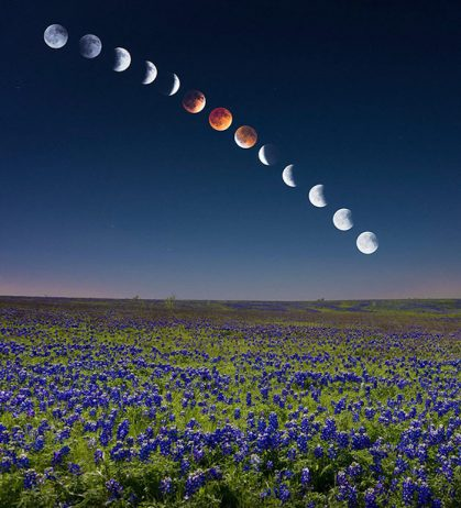 Magnificent Composite Image of the Blood Moon Lunar Eclipse2