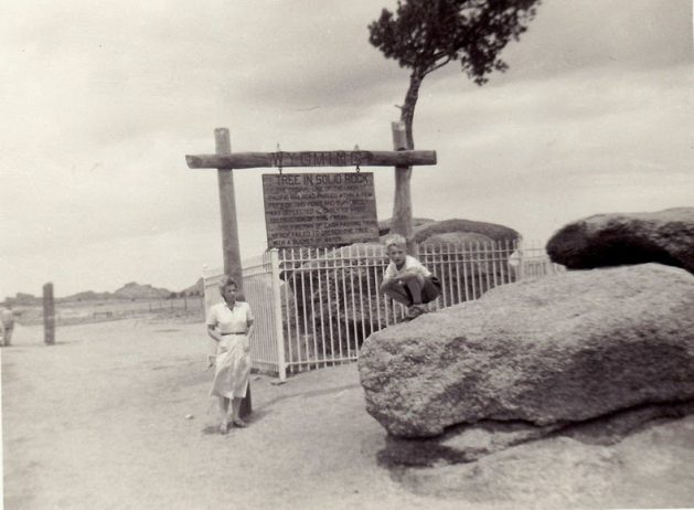 Peculiar Tree in the Rock of Wyoming4
