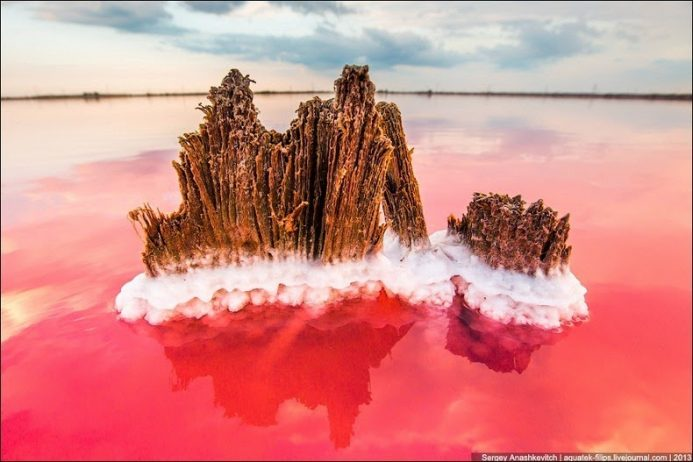 Sivash Salt Lagoons in the Crimean Peninsula21