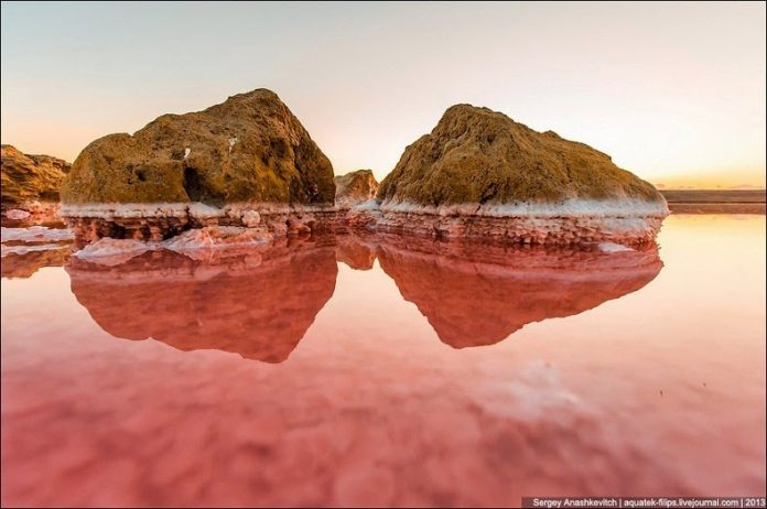 Sivash Salt Lagoons in the Crimean Peninsula6