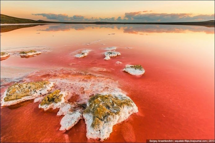 Sivash Salt Lagoons in the Crimean Peninsula7