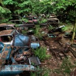 Traffic Jam Stuck in Belgium Forest For 70 Years