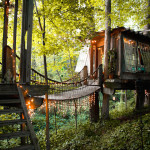 Fascinating Trio of Treehouses Each Have an Exclusive Cozy Feel