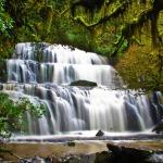 Purakaunui Falls A Gorgeous Three Tiered Cascading Waterfall