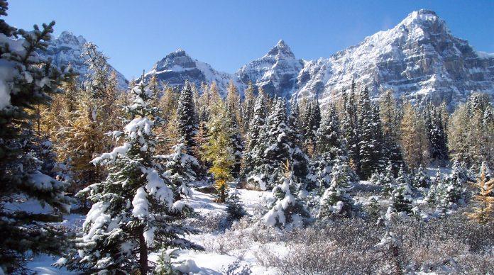 Mount Babel Alberta Canada Charismatic Planet