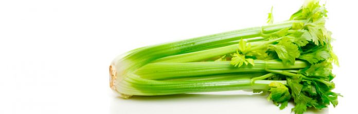 Celery is a heavy, even gluttonous feeder, it needs very rich soil.