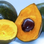 Super Food You Need To Know About Lucuma Benefits