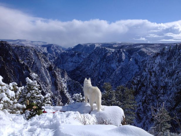 Black Canyon of the Gunnison, Colorado