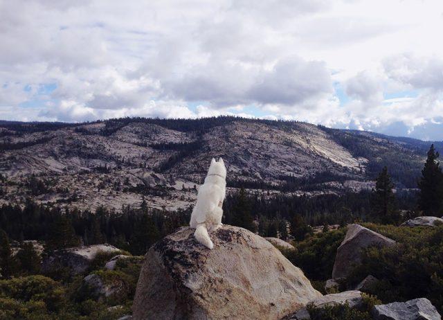 Eldorado National Forest, CA