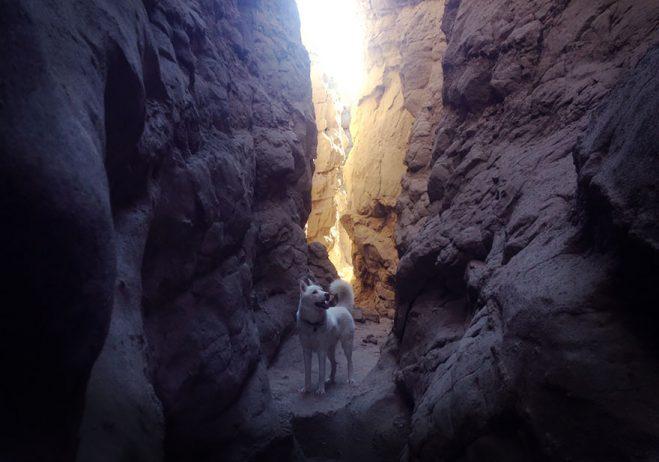 The Slot Canyons of Anza-Borrego, CA