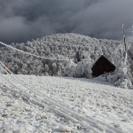 Extreme Weather Conditions Turned Mount Javornik into a Kingdom Of Ice