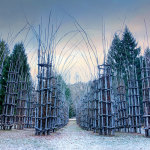 A Splendid Sculpture Made Of Living Breathing Trees