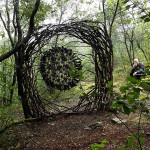 Artist Creates Surreal Sculptures from Organic Materials