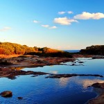 True Beauty of Royal National Park Australia