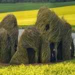 Stunning Twig Sculptures of Patrick Dougherty