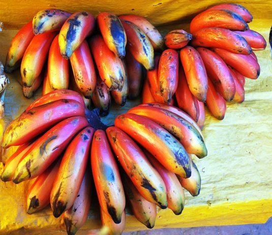 Red bananas from Metepec, Mexico
