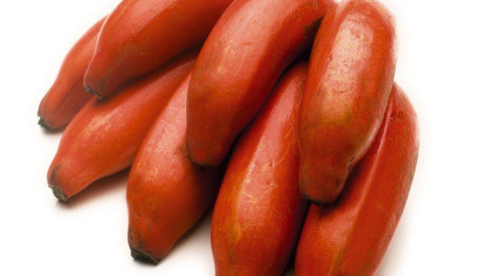 """Red bananas, is also recognized as """"Red Dacca bananas"""" in Australia"""
