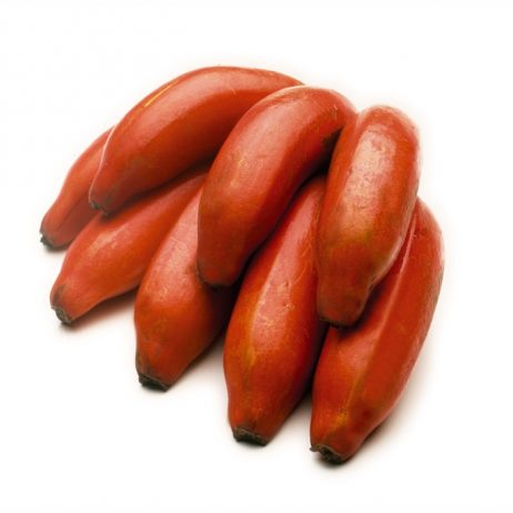 "Red bananas, is also recognized as ""Red Dacca bananas"" in Australia"
