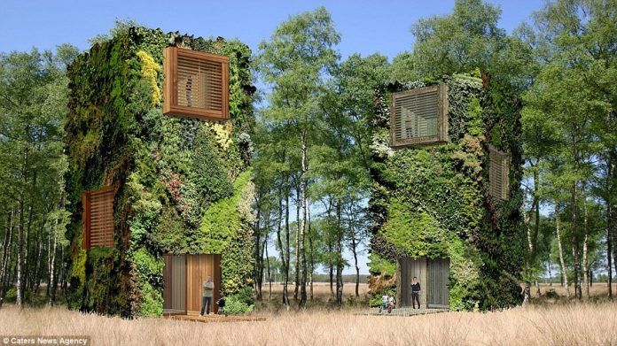 In Raimond de Hullu's city of the future, an idea of people live in Eco City tree-scrapers made from recycled wood, covered in leafy foliage