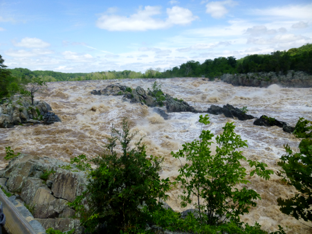 Great Falls, on the Potomac River, reveals the hard metamorphic rock of the Piedmont - and how rivers in flood stage carve channels