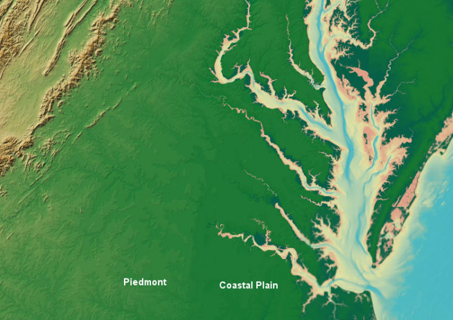 the Fall Line separates the Coastal Plain (darker green...) and the Piedmont