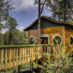 The Hobbit Tree House
