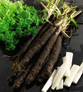 how to grow parsnips from tops