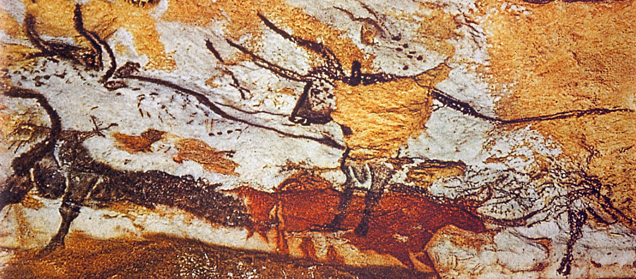 Carbon dating cave paintings 8