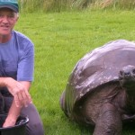 World's oldest Tortoise, age 184 years