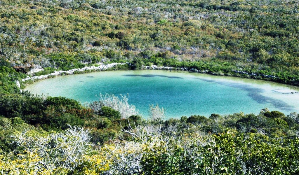 In fact, Watling's Blue Hole has incredible water chemistry, has no fresh water anywhere not even a tiny lens on top.
