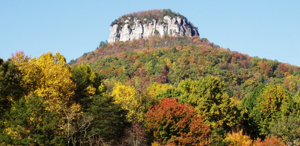 Pilot Mountain is a distinctive natural feature in the North Carolina of United States.