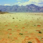 Fairy Circles: A Lingering Mystery